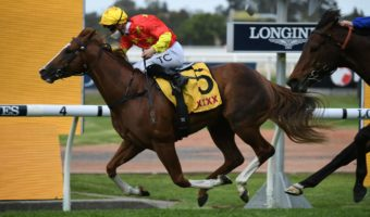2021 Golden Rose Stakes Results: In The Congo Beats Anamoe