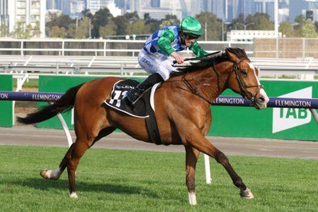 The Bart Cummings Winner Grand Promenade Firms in Melbourne Cup 2021 Betting