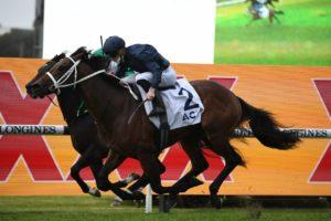 Head Of State (Photo: Steve Hart) | Races.com.au