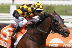 Probabeel (Photo: Ultimate Racing Photos) | Races.com.au