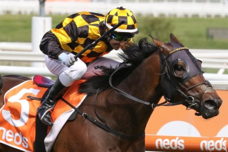 Cox Plate Odds Firm on 2021 Caulfield Might And Power Stakes Winner Probabeel, Zaaki Runs 3rd