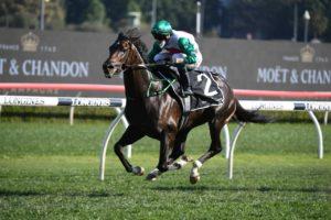 Profondo (Photo: Steve Hart)   Races.com.au