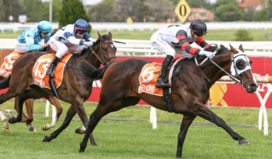 2021 Neds Classic Favourite Gunstock Enters Victoria Derby Calculations
