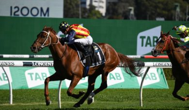 2021 The Everest Winner: Third Time the Charm for Nature Strip