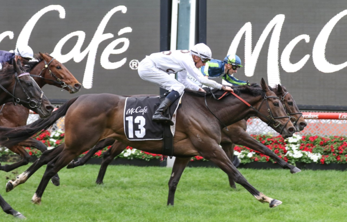 No Melbourne Cup For Moonee Valley Gold Cup Winner Lunar Flare