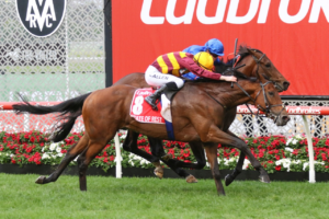 State Of Rest (Photo: Ultimate Racing Photos) | Races.com.au