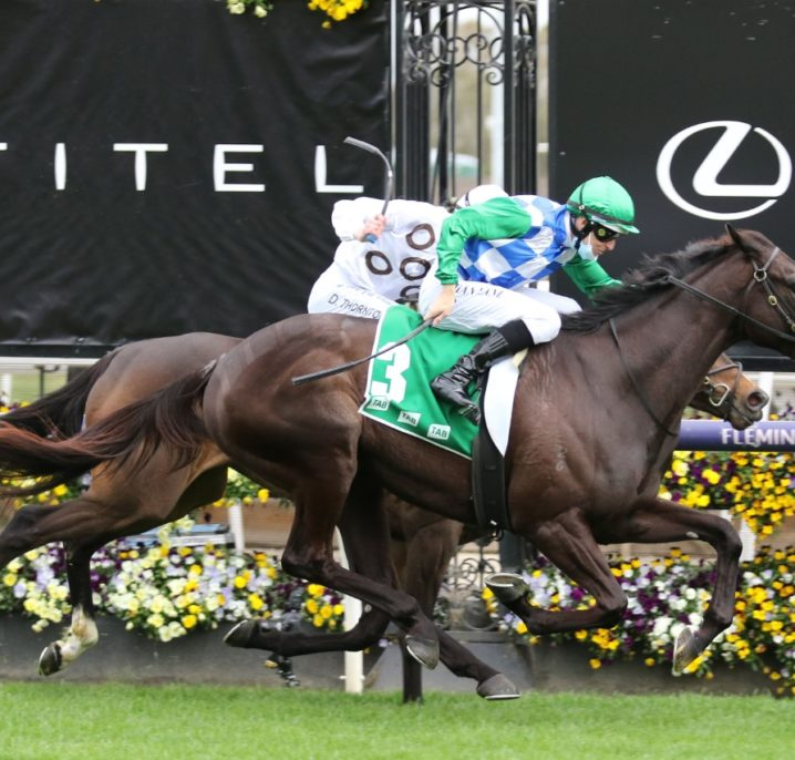 2021 Bendigo Cup Field & Betting: Horses Chase Melbourne Cup Start