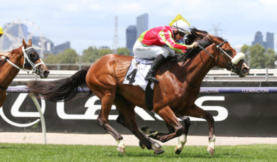 Melbourne Cup Not on the Cards for 2021 Bendigo Cup Winner Wentwood