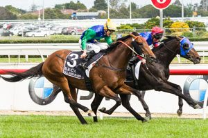 All Too Hard and Pierro