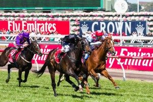 Fiorente and Red Cadeaux