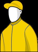 Seismos 2014 Melbourne Cup Jockey Silks