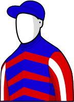 Royal Diamond 2014 Melbourne Cup Jockey Silks