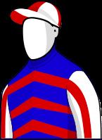 Mutual Regard 2014 Melbourne Cup Jockey Silks