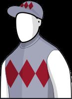My Ambivalent 2014 Melbourne Cup Jockey Silks