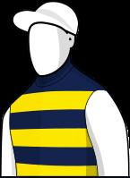 Gatewood 2014 Melbourne Cup Jockey Silks