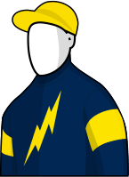Araldo 2014 Melbourne Cup Jockey Silks
