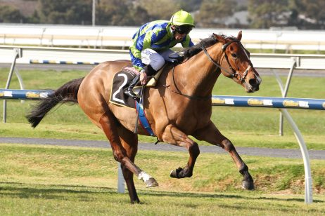 2017 Darwin Cup Tips and Betting Preview