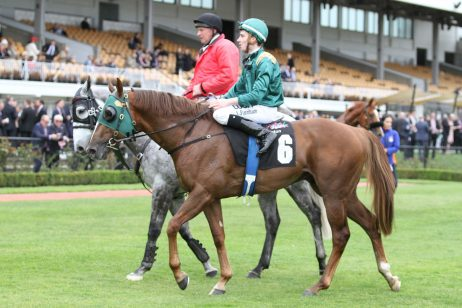 Capacity 2018 Perth Cup Field Released