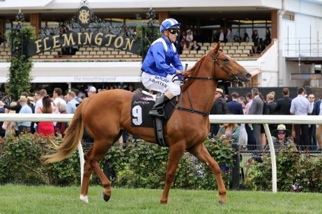 Full field of 16 plus 5 emergencies for 2018 Magic Millions 2yo Classic