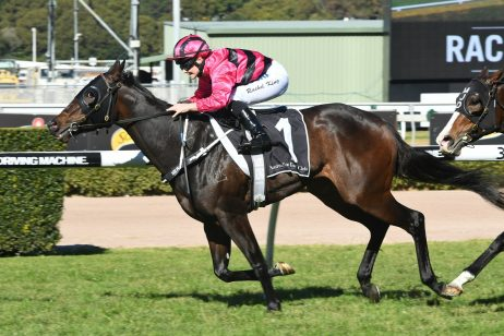 Memes Vies for 2018 Expressway Stakes Shot