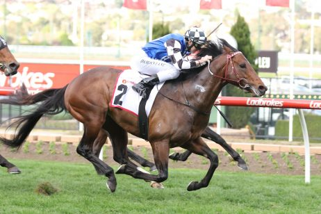 Brave Smash Heads 2018 Futurity Stakes Nominations