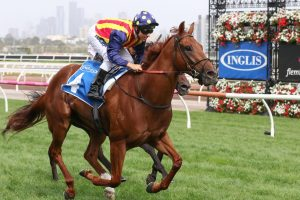 Nature Strip Horse Form (Photo: Ultimate Racing Photos) | Races.com.au