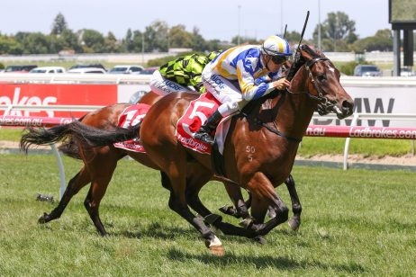 Ladbrokes Blue Diamond C&G Prelude 2018: Field & Odds