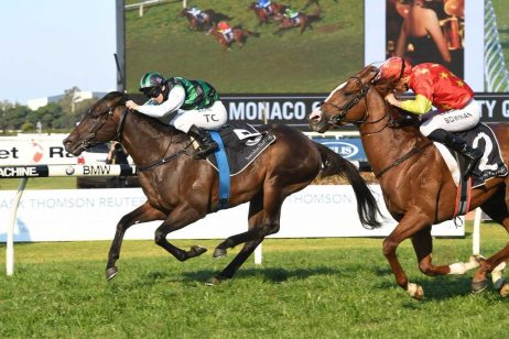 2018 Expressway Stakes Tips & Odds Update
