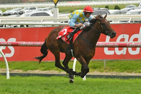 Kevin Hayes Winner Booker Considered for Oakleigh Plate 2018