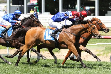 Qaflia Chases Historical Blue Diamond Stakes 2018 Win