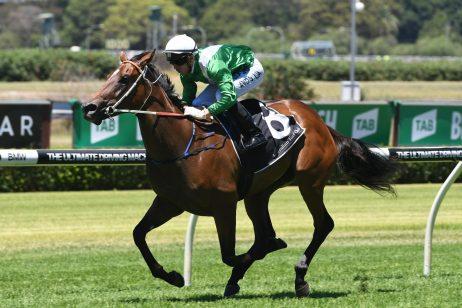 Golden Slipper Favourite Estijaab Heads 2018 Reisling Stakes Field & Odds