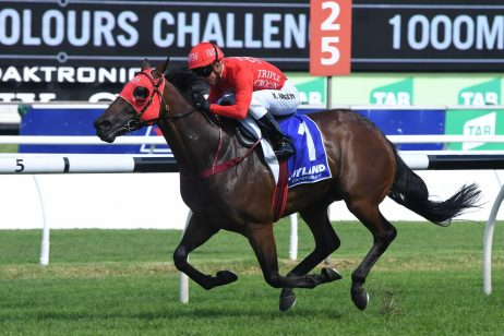 Redzel Dominates 2018 TJ Smith Stakes First Acceptances