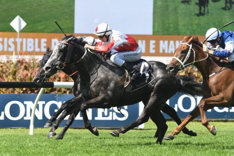 2018 Sydney Cup Next for NE Manion Cup Winner Master Of Arts