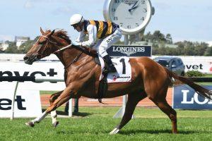 Gailo Chop Horse Form (Photo: Steve Hart) | Races.com.au