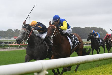 2018 All Aged Stakes Next-Up for TJ Smith Hope Le Romain