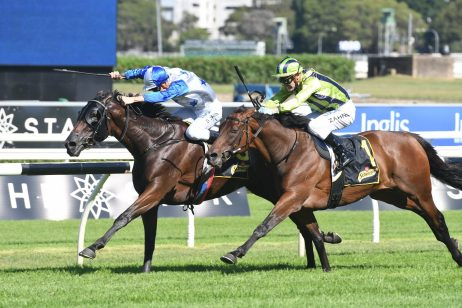 Sydney Cup 2018 Next Race for Chairman's Winner Sir Charles Road