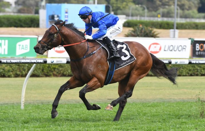 2021 Australia Stakes Field & Betting Update: Viridine Odds-On Favourite of Six