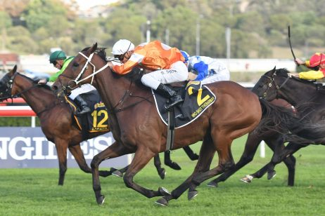 2018 Sydney Cup Results: Who Shot Thebarman Wins at Fifth Attempt