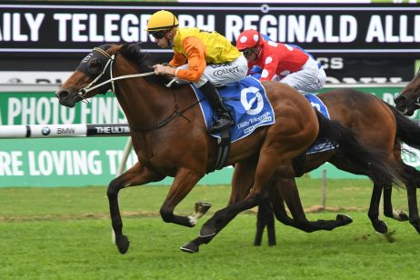 Queensland Oaks Next for The Roses Betting Drifter Torvill