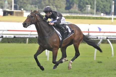 Tradesman headlines the 2018 Ipswich Cup nominations