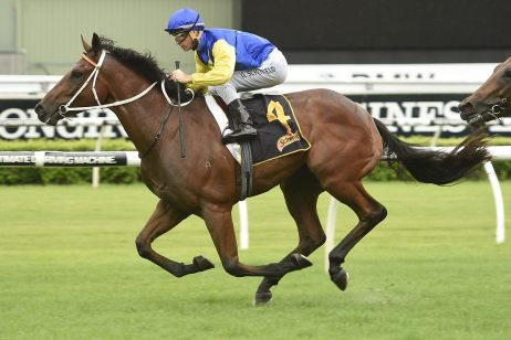 Le Romain gets top weight for 2018 Stradbroke Handicap