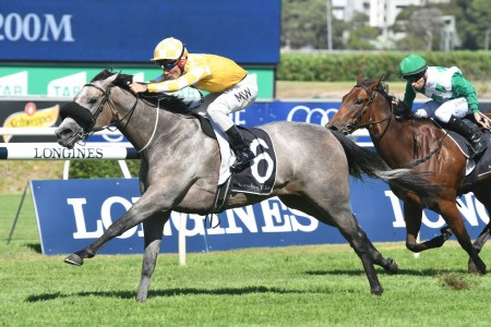 Randwick – Concorde, Tramway, Chelmsford, Furious Stakes Tips
