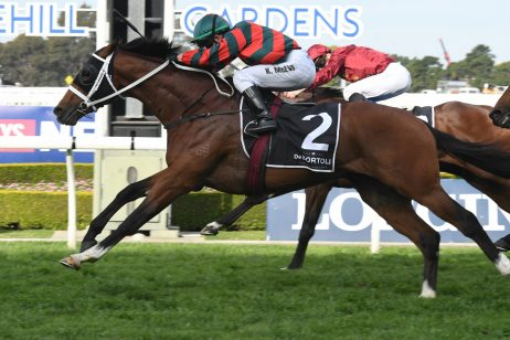 2018 Caulfield Guineas Field: The Autumn Sun, Native Soldier Draw Side by Side