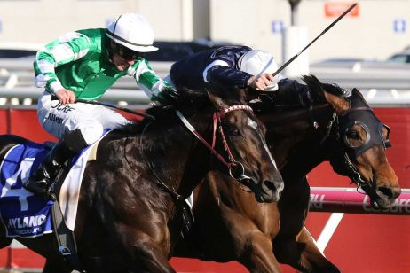 Ladbrokes Feehan Stakes Day – The Valley Scratchings & Track Report