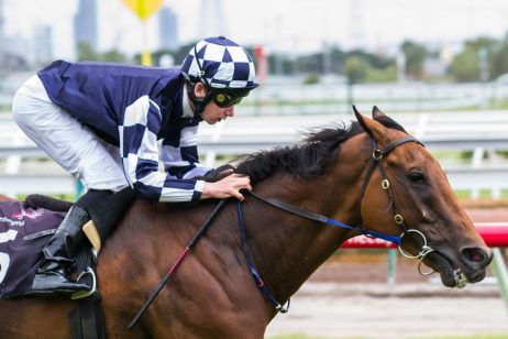 Stable has high hopes for Spirit Of Valor in 2018 Manikato Stakes