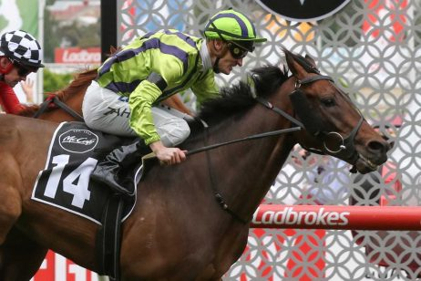 Moonee Valley Gold Cup winner Ventura Storm on target for the Melbourne Cup