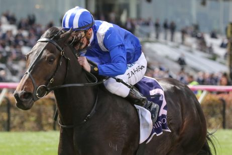 Hayes Thinks Jaameh Better Melbourne Cup Chance Than Ventura Storm