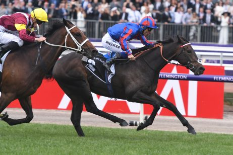 Third Placegetter A Prince of Arran Put in Brave Melbourne Cup Effort