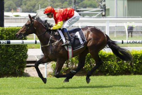 2021 Gold Coast Guineas Results: Marboosha Salutes For Punters