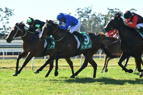 Magic Millions: Manicure The Mover in Fillies & Mares Market